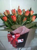 Red Tulips for Valentines - Direct form Holland
